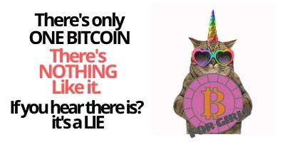 There is only one Bitcoin. Then there are Bitcoin scams.
